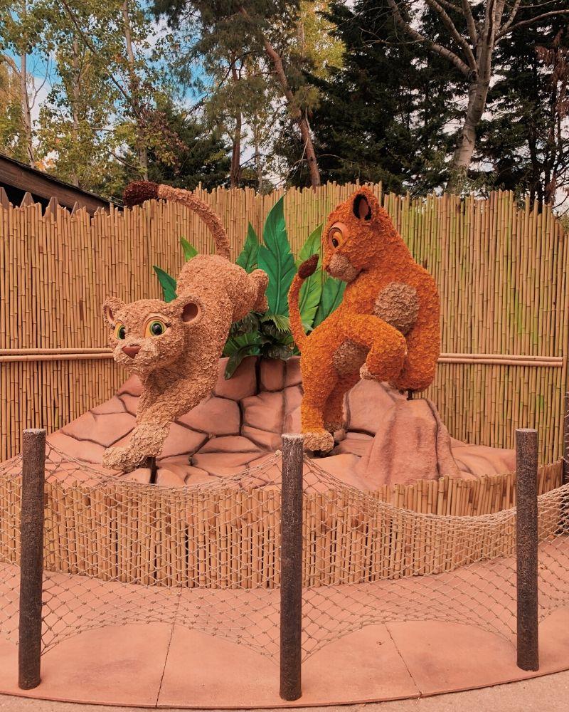 Festival Re Leone Disneyland Paris